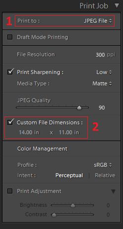 Screenshot of the Print Job menu and settings